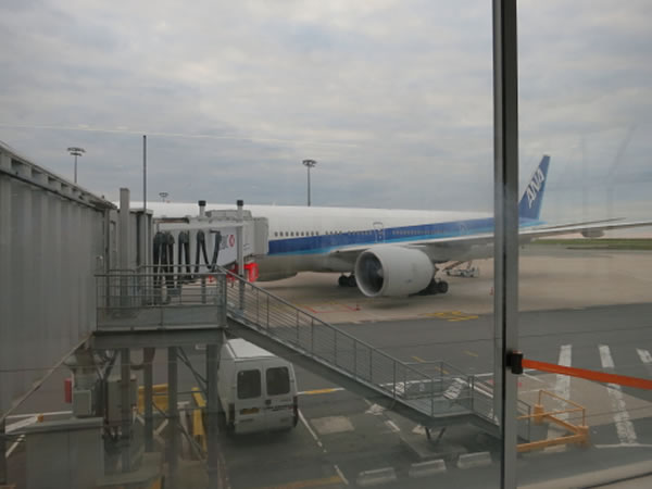 2015年1月 全日空 / ANA NH216 搭乗記