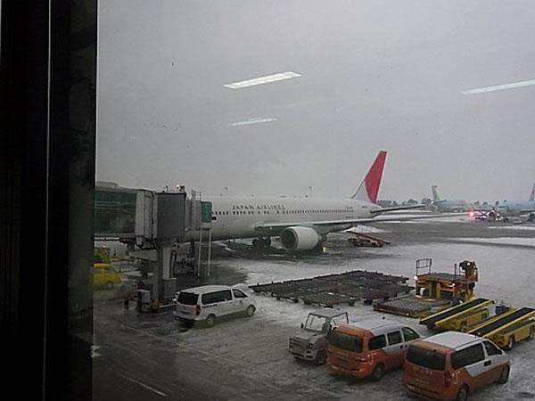 2013年3月 日本航空 / JAL JL90 搭乗記