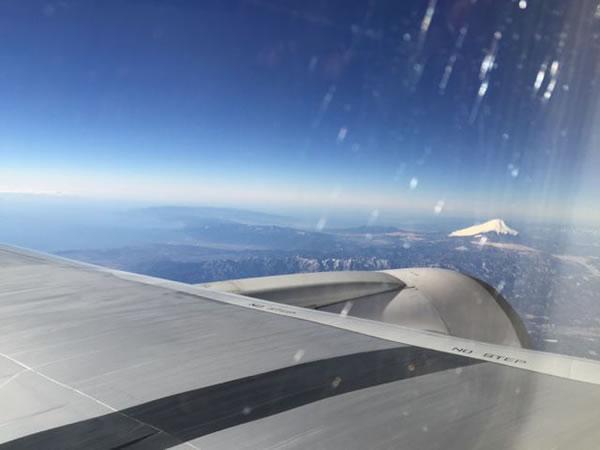 2015年2月 日本航空 / JAL JL91 搭乗記