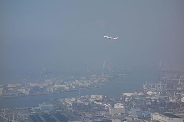 2014年6月 日本航空 / JAL JL91 搭乗記