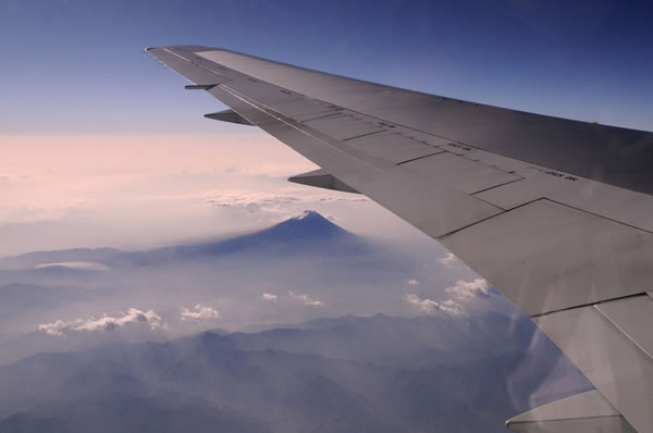 2010年11月 日本航空 / JAL JL91 搭乗記