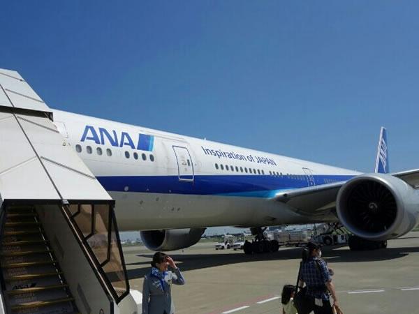 2015年6月 全日空 / ANA NH862 / NH1160 搭乗記