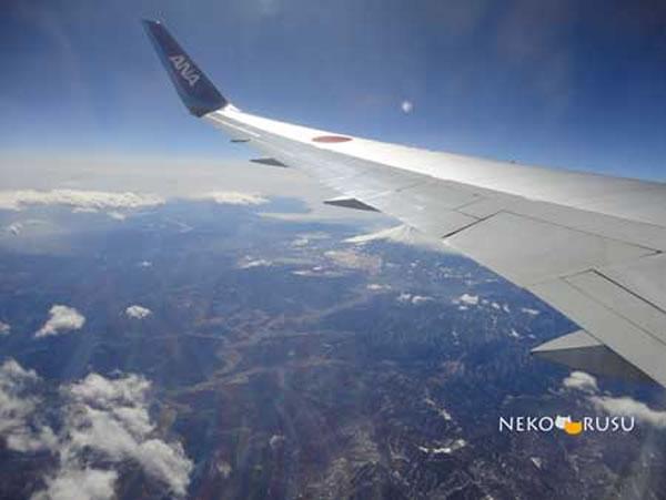 2013年2月 全日空 ./ ANA NH865 / NH1165 搭乗記